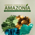AmazoniaAmbienteEnergia_tapa