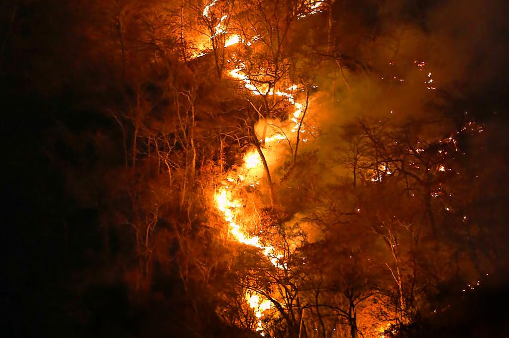 Incendios amazónicos y el Acuerdo de París